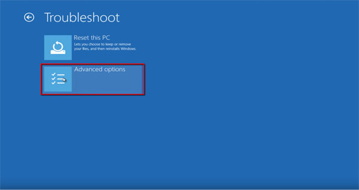 Windows10 advanced options