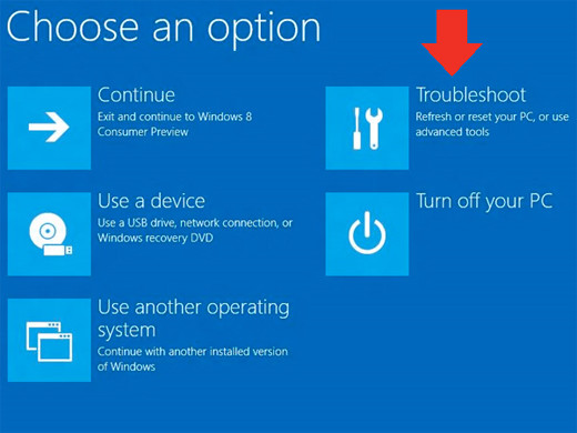 Windows8 choose an option